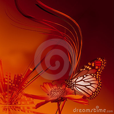 Free Butterfly Royalty Free Stock Photos - 1273738