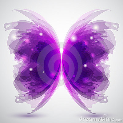 Free Butterfly Stock Images - 19503764