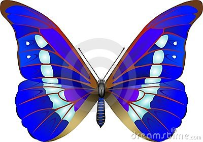 Butterfly Stock Photos - Image: 245063