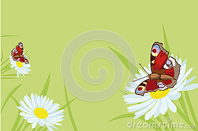 Butterfly background with flowers