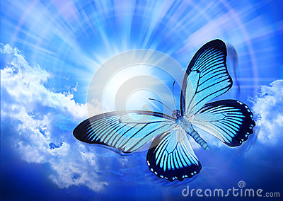 Butterfly Blue Sky Sun Royalty Free Stock Photos - Image: 24906248