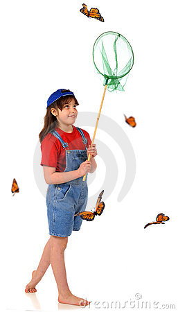 Butterfly Catcher