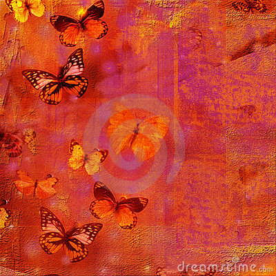 Free Butterfly Collage Royalty Free Stock Photos - 3869888
