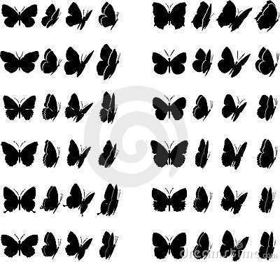 Free Butterfly Collection 1 Stock Photography - 5982552
