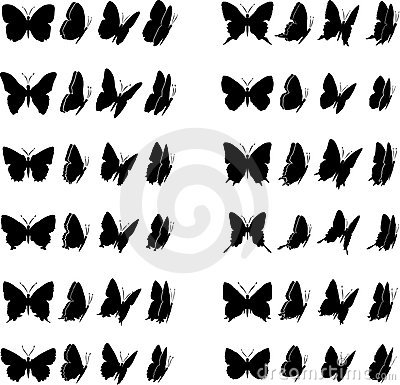 Free Butterfly Collection 2 Stock Images - 5982614