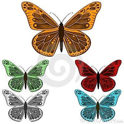 Butterfly collection isolated on white background