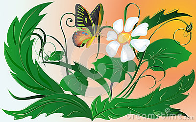 Butterfly and daisywheel
