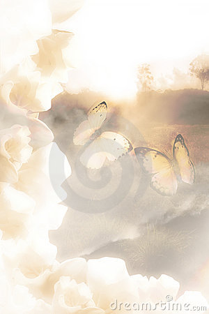 Free Butterfly Dreams Royalty Free Stock Image - 14297306