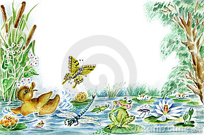 Butterfly, duckling and frog