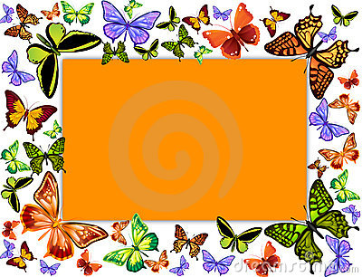 butterflies frame illustration with orange card in the middle
