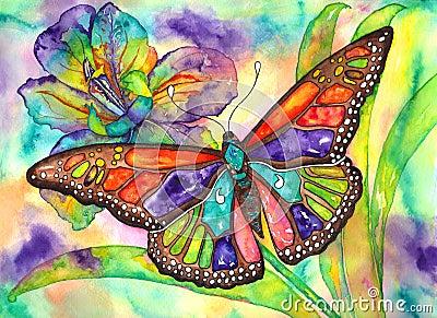 Butterfly iris Stock Photo