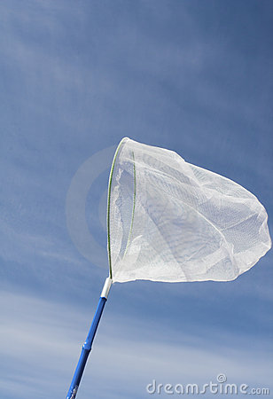 Free Butterfly Net Stock Images - 789734