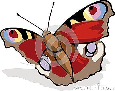 Butterfly Peacock Eye