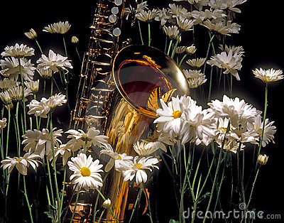 Butterfly and Sax in the Daisy