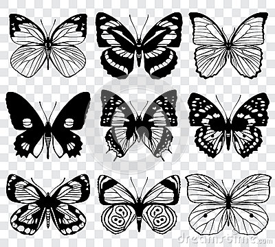 Free Butterfly Silhouettes Vector Macro Collection Stock Photography - 80657982