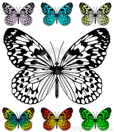 Free Butterfly Vector Template Stock Image - 10824181