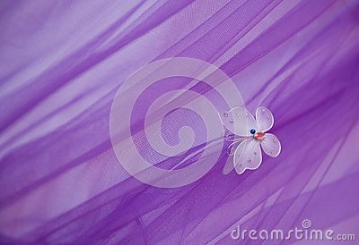 Butterfly On Wedding Dress Stock Image Image 14386421