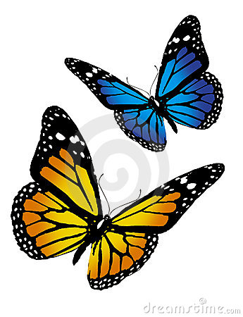Free Butterflys Royalty Free Stock Image - 1438426