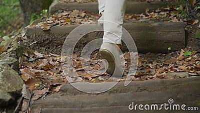 Buty sportowe na szlaku w górach, aktywność na zewnątrz Turyści idą wzdłuż szlaku w leśnym spacerze górskim zdjęcie wideo
