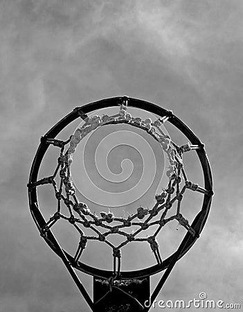 BW basket