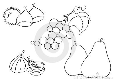 Bw grape fig chestnuts pears