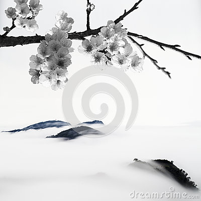 BW style Cherry blossoms