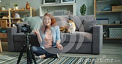 Cámara lenta del vídeo de registración del vlogger femenino en casa con el perro lindo almacen de metraje de vídeo