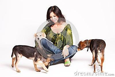 Cães adotados