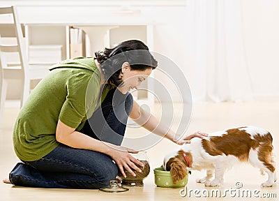 Cão de alimentação da mulher