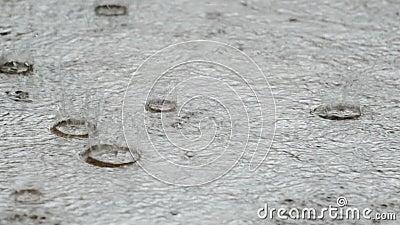 Caída de lluvia en la calle metrajes