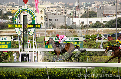Caballo que gana en Hyderabad Fotografía editorial