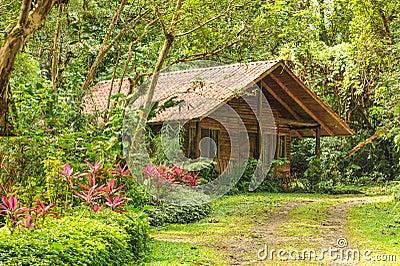 cabane en rondins en bois dans une for t tropicale tropicale photo stock image 48643208. Black Bedroom Furniture Sets. Home Design Ideas