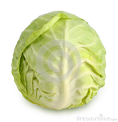 Free Cabbage Royalty Free Stock Images - 25081309
