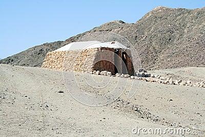 Cabin in desert