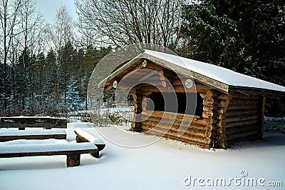 Cabin in Snowy Forest