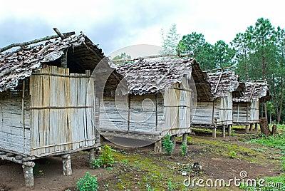 Cabin in thai forest