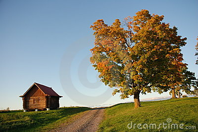 Cabin and tree, taken near sundown in Autumn