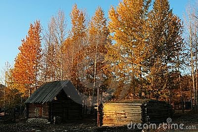 Cabin in village