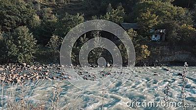 Cabina perto do rio filme