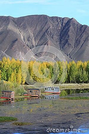 Cabins near Kyi river