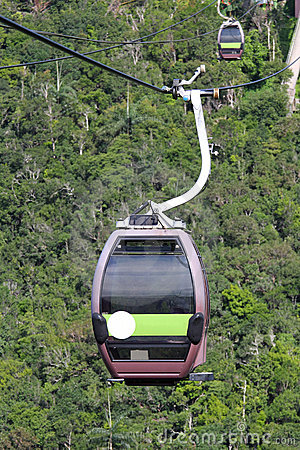 Cable Car in the Rainforest