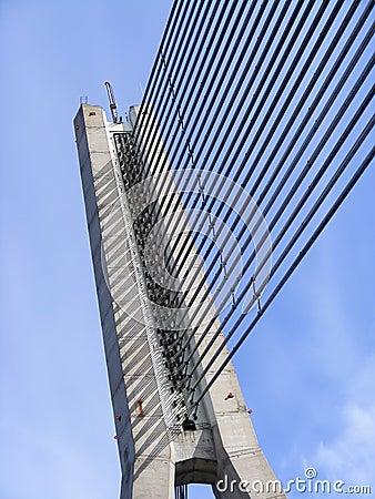 Cable-srayed bridge