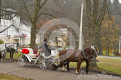 Cabman in Marianske Lazne, Czech Republic. Editorial Stock Image