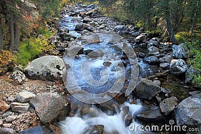 Cache La Poudre River #2, autumn