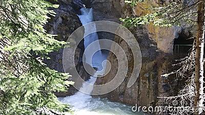 Cachoeiras em Johnston Canyon vídeos de arquivo