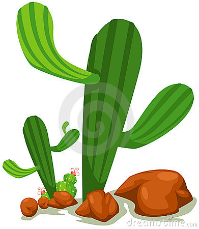 Free Cactus Royalty Free Stock Photography - 18834827