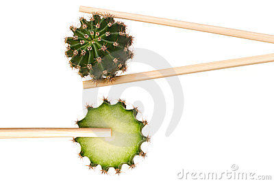 Cactus in chopsticks