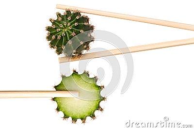 Cactus in chopsticks