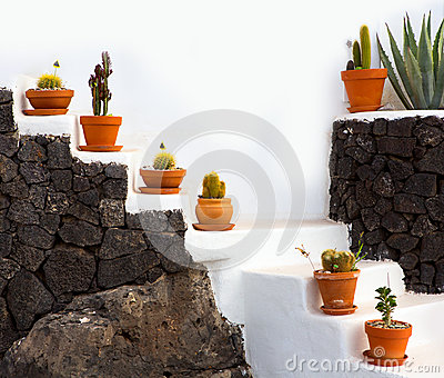 Cactus clay pots in Lanzarote over white stairs