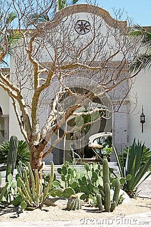 Cactus Courtyard